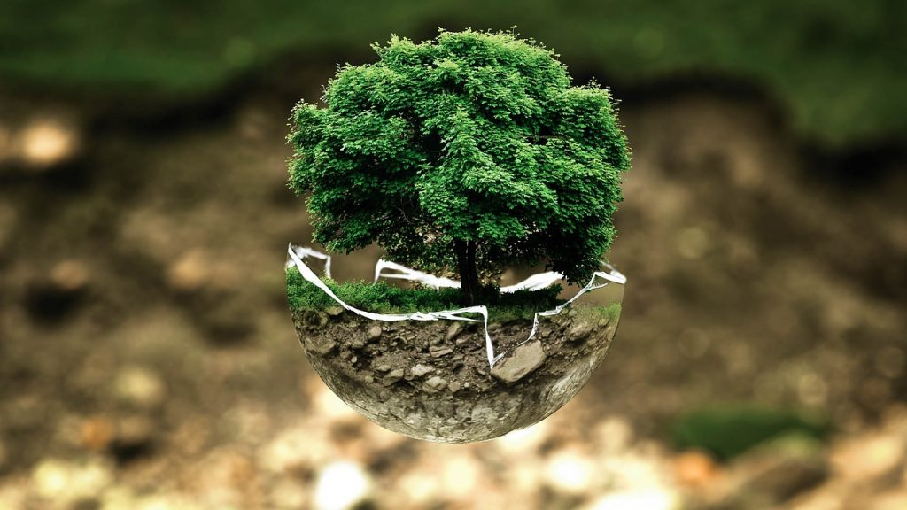 Picture representing Earth Day.