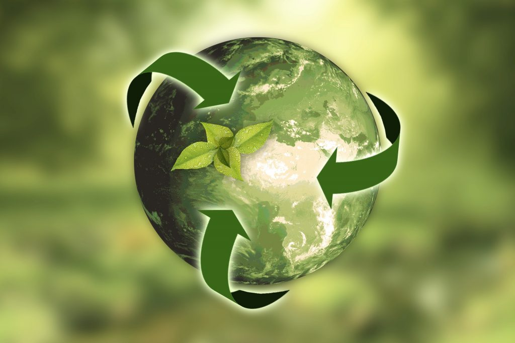 Common Recycling Questions